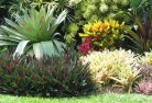 Abels Bay Beach and coastal landscaping 8